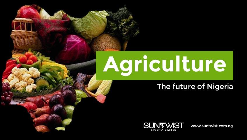 MAXIMISING YOUR INVESTMENT OPPORTUNITIES_Suntwist-Nigeria