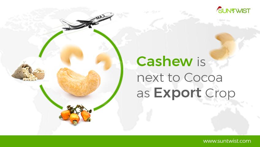 cashew-is-next-tococoa_suntwist.com.ng