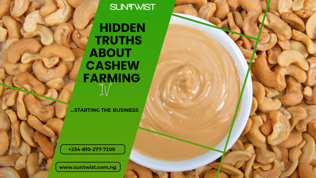 Hidden truths about Cashew Farming