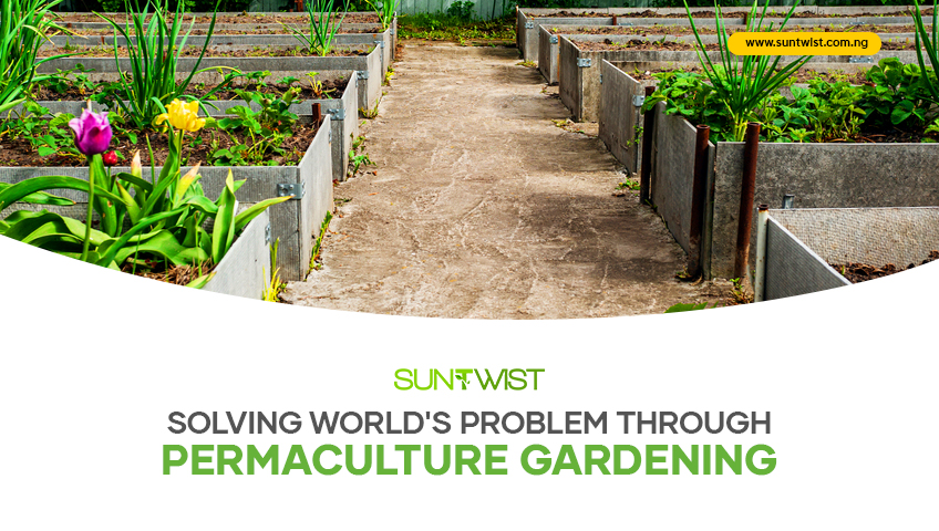solving-the-worlds-problem-through-permaculture-garden