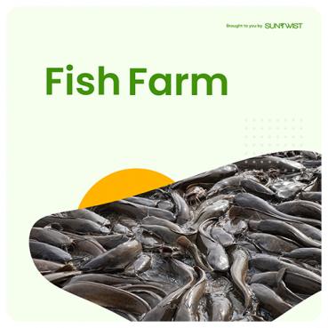 Fish Farming card