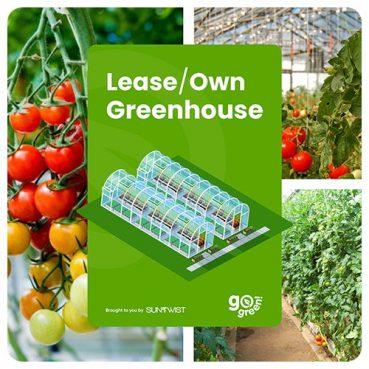 Greenhouse with suntwist