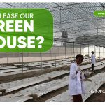 why-lease-our-greenhouse